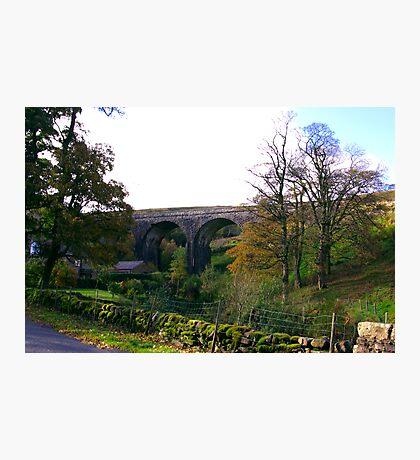 The Viaduct. Photographic Print
