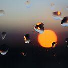 Solar System by pusztafia
