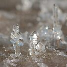 bitty ice creatures by Roslyn Lunetta