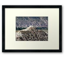 On Top, Looking Down Framed Print