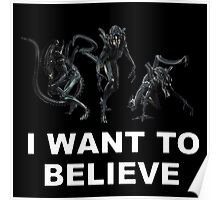 I Want To Believe  In Xenomprhs Poster