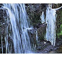 Hang out  to thaw Photographic Print