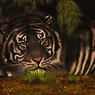 maltese tiger by carss66