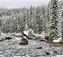 Maligne River by Vickie Emms