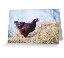 Chicken In The Straw ~ Impressions Greeting Card