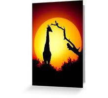 Tall sunset Greeting Card