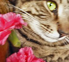 Flowers and Cats by MeowPic