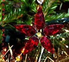 Crystal Star by Braedene
