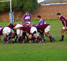 Rugby Game in Action by Laurel Talabere