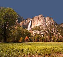 Yosemite Falls by Adam Bykowski