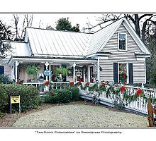 Quaint Shops Summerville by Leta Davenport