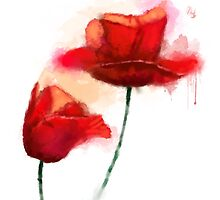 Red Poppy watercolor like painting  by Thubakabra