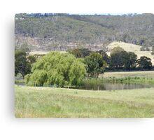 A typical Aussie billabong Canvas Print