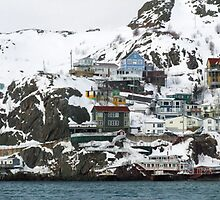 """The Battery"", St. John's Harbour by Max Buchheit"