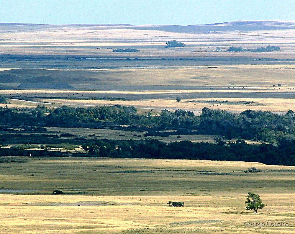 Faces of the Prairies by George Cousins