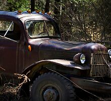 Rustic Antique Truck by Christina Rollo