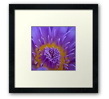 Water lily abstract Framed Print