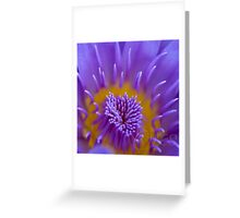 Water lily abstract Greeting Card