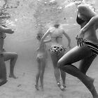 Swimming beauties by Brad  Malyon