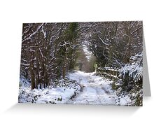 A Winter Snow Scene Greeting Card