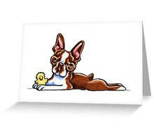 Colored Boston Terrier Greeting Card