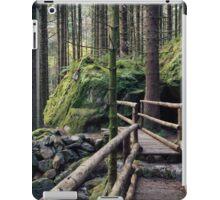 Gougane Barra Bridge iPad Case/Skin