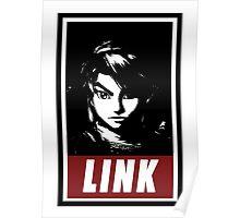 The Legend of Zelda: Link Poster