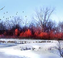 Winter on the Flyway by Nadya Johnson