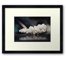 Salt whitout pepper Framed Print