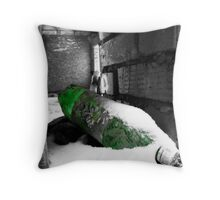 Serve chilled - St. Petersburg, Russia Throw Pillow