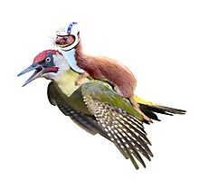 Flying Woodpecker Weasel Knievel Meme Photographic Print