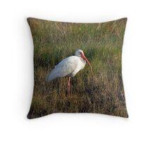 Ibis Throw Pillow