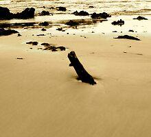 Ocean debris at Denhams Beach NSW by VenturAShot