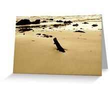 Ocean debris at Denhams Beach NSW Greeting Card