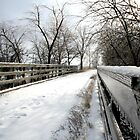 Wabash Trace Bridge by jbears