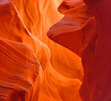 Lower Antelope Canyon Slot by Virginia Maguire