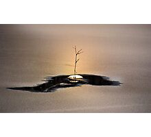 No (Wo)man Is an Island Photographic Print