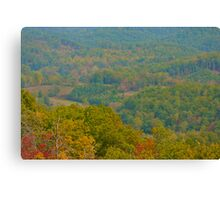 Scenic Valley Canvas Print