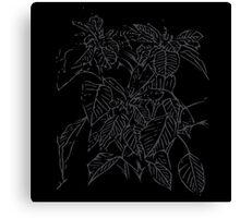 The Plant (charcoal black) Canvas Print