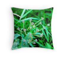 Struble Lake Wildflowers Throw Pillow