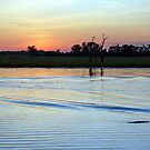 Crocodile at Sunset, Kakadu National Park, Northern Territory, Australia by Adrian Paul