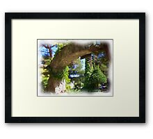 Winery Gateway Framed Print