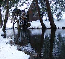 Little Bear Creek by NancyC