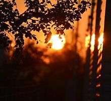 Sunset on the Horizon  by blazeandflame