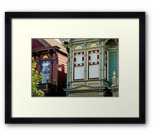 Not Eye-dentical Twins - var Framed Print