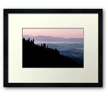 Soft Morning Framed Print