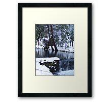 Little Bear Creek With a  Waterfall Framed Print