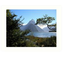 Mitre Peak - South Island - New Zealand Art Print