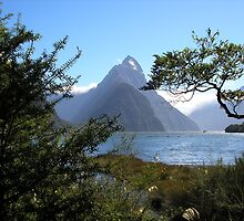 Mitre Peak - South Island - New Zealand by Geoff Maltby
