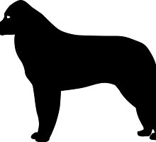 Kuvasz Dog Silhouette by SandpiperDesign